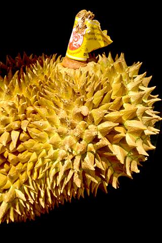 durian01.jpg