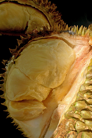 durian02.jpg
