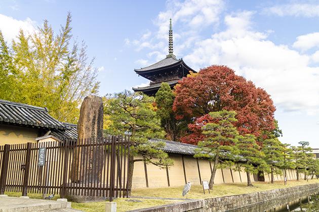 京都の東寺