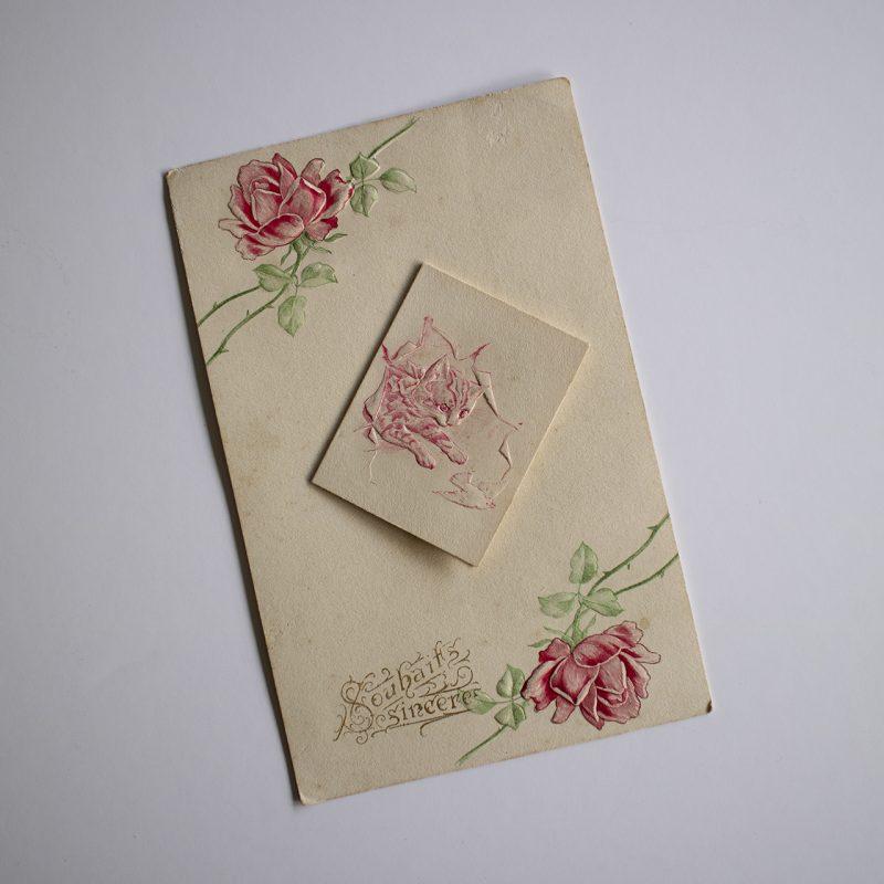 20世紀初頭の猫のカード